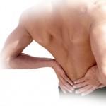 l'assocation glucosamine curcuma et harpagophytum est la combinaison de choix pour soulager les douleurs !